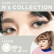 N'sCOLLECTION 1day /ラッシー